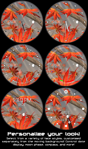 Autumn Tree Watch Face