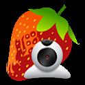 Fragolina videochat icon