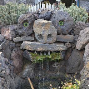 fontana mostruosa by Francesco Benettolo - Buildings & Architecture Other Exteriors ( giardino, laghetto, mostro, scultura, fontana )