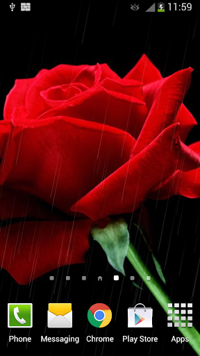 Rain Rose Live Wallpaper  screenshots 5