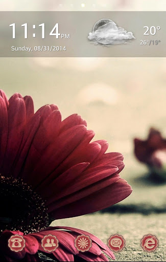 HD Vintage Flower Go Launcher