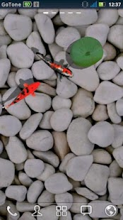 3D Koi Pond Reality Live Wallp - screenshot thumbnail