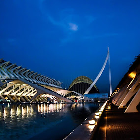 Ciutat de les Arts i les Ciències by Orkidea W. - Buildings & Architecture Bridges & Suspended Structures (  )
