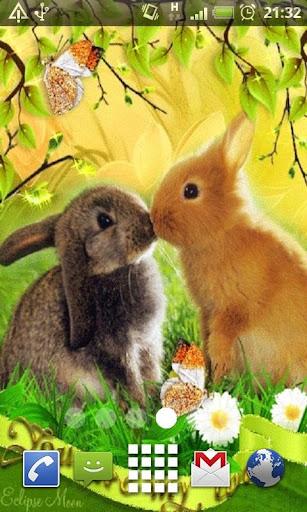 Kissing Bunnies Live Wallpaper