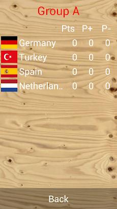 2013年バレーボール女子欧州選手権のおすすめ画像2