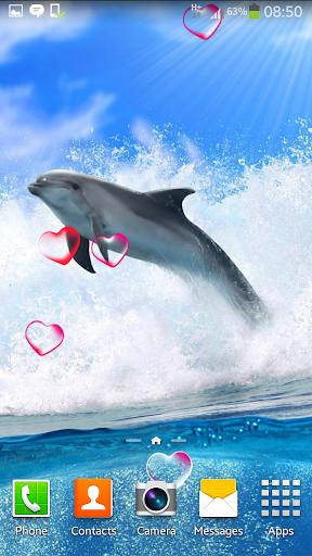 海豚動畫壁紙