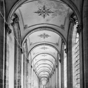Monastery in Arras by Wim De Koster - Black & White Buildings & Architecture ( pattern, arras, monastery, france, museum )