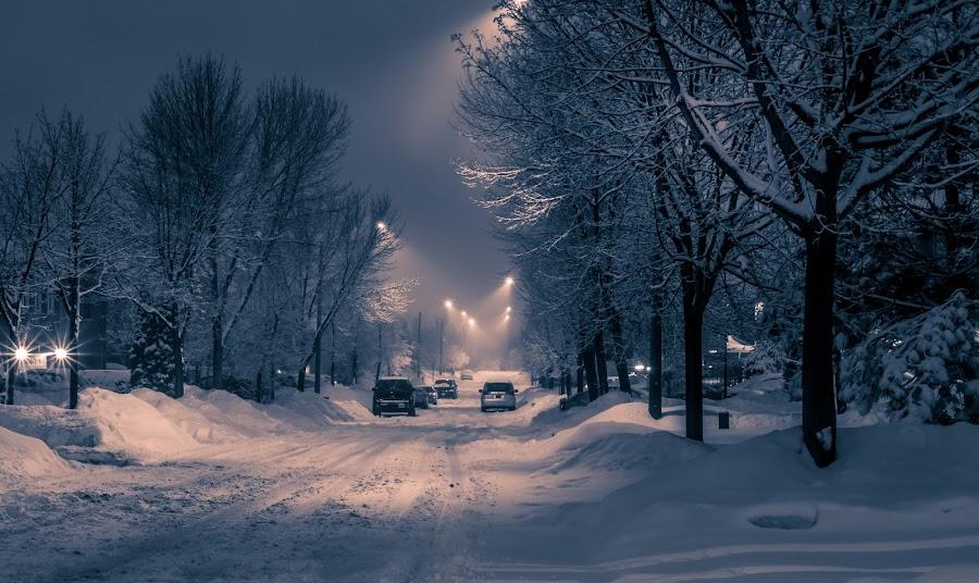 Night time on my street by Jack Brittain - City,  Street & Park  Night ( b&w, canada, olympus omd em-1, snow, night, ontario, mississauga )