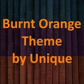 eXpeRianZ™ Theme Burnt Orange