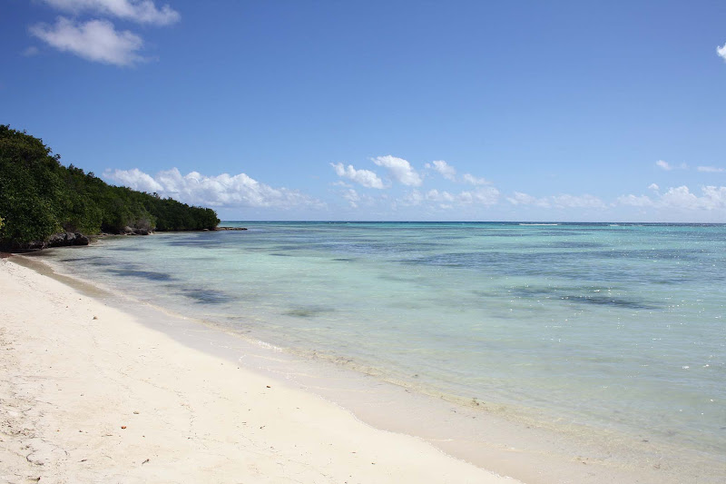 A beach on Guadeloupe in the Caribbean.