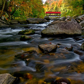Broad River, near Lake Lure, NC by Jonathan Wheeler - Landscapes Waterscapes ( nc mountains, moving water, autumn leaves, covered bridge, mountain streams )