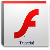 Flash Tutorial Video