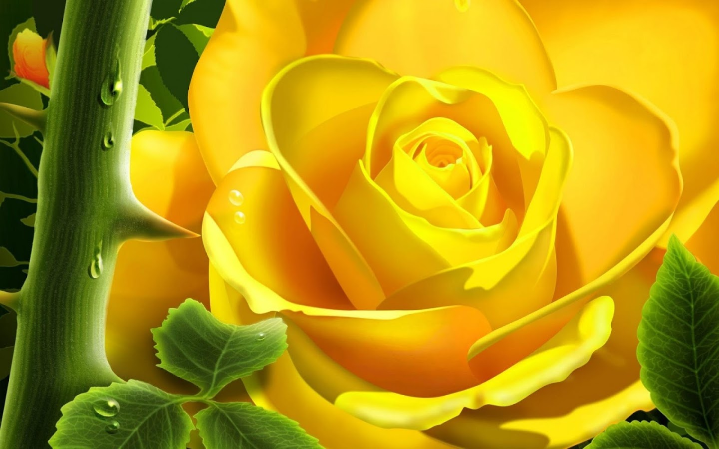 Hd for desktop nice rose mobile wallpapers 3d rose wallpaper free - 3d Rose Live Wallpaper Screenshot