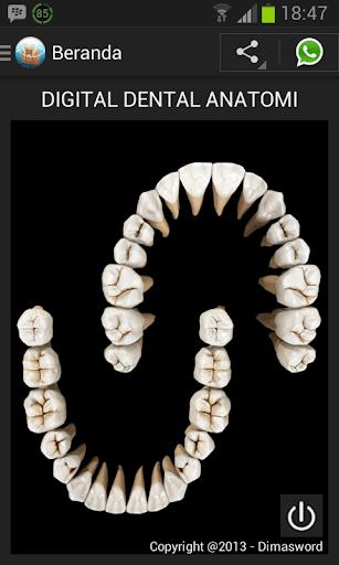 Digital Dental Anatomi