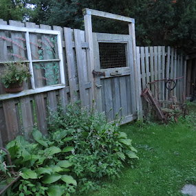 The Gate by Sandy Brittain - Buildings & Architecture Other Exteriors ( window, green, antique, garden, gate )