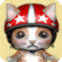 CatCollection1 icon