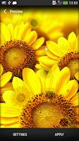 Screenshot of Sunflower Live Wallpaper