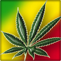 Rasta Marijuana Live Wallpaper icon