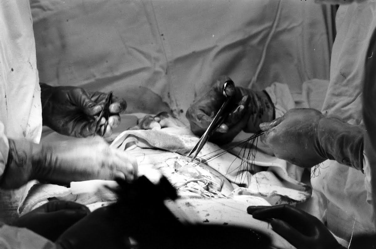 The Training Of A Surgeon Dr. George Johnson New York Hosp.