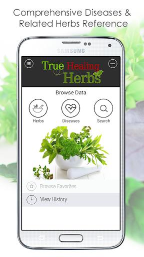 Natural Healing Herbs Guide