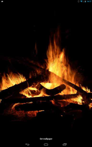 Night Campfire Live WP