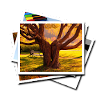 Wallpapers & Backgrounds icon