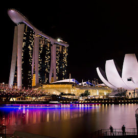 Singapore Marina Bay Sand_Helical Bridge by Foo Fok - City,  Street & Park  Skylines