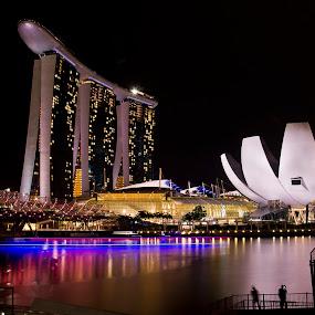 Singapore Marina Bay Sand_Helical Bridge by Foo Fok - City,  Street & Park  Skylines