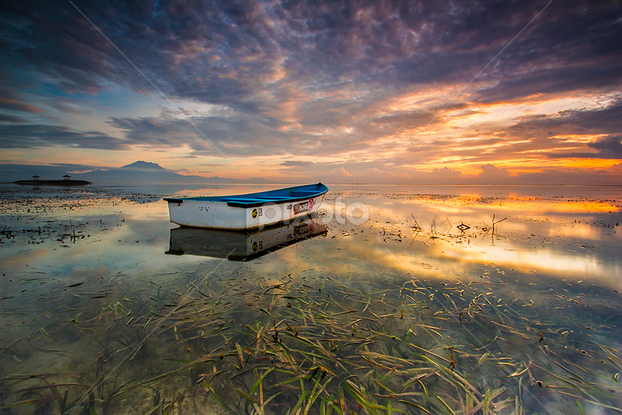 A Thousand of Seaweed by Gede Suyoga - Landscapes Waterscapes