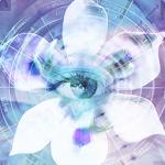 Blue Iris 2.0.56 (Paid)