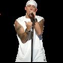 Eminem widgets logo