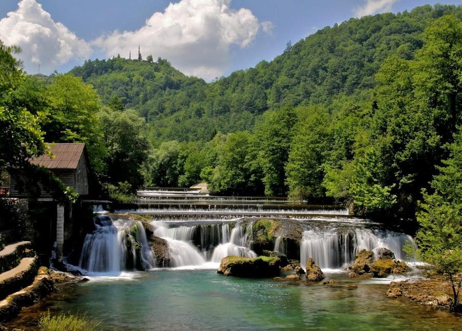 Kosteljski buk (Bosna i hercegovina)! by Jože Borišek - Uncategorized All Uncategorized