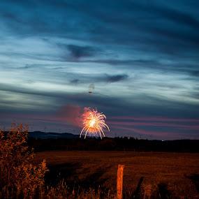 Fireworks 2014 by Chris Reynolds - Public Holidays July 4th ( parsonswv, fireworks, july 4th )
