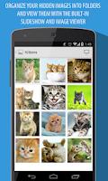 Screenshot of Frost Browser & Image Hider