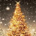Magical Christmas icon