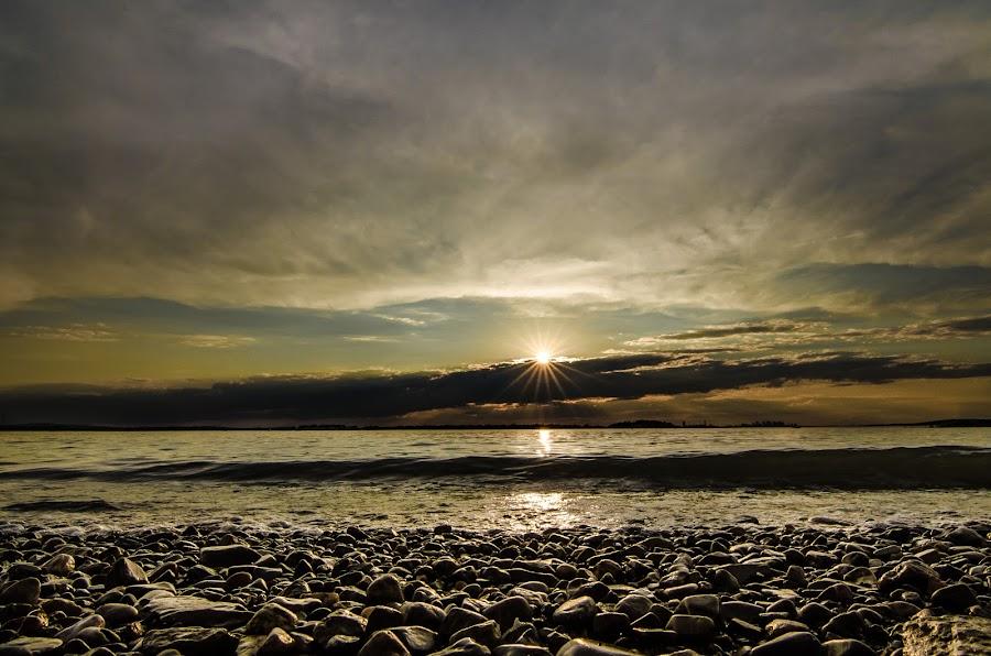 Webb Park by Justin Galusha - Landscapes Sunsets & Sunrises (  )