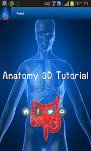 Anatomy 3D Tutorial - screenshot thumbnail