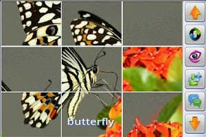 Screenshot of Insect Jigsaw Puzzles