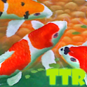 koi live wallpaper icon