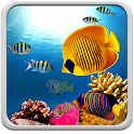 Coral Reef Live Wallpaper icon