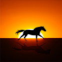 Wild Horse Live Wallpaper icon