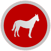 Equus - Horse Education