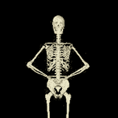 Funny Skeleton Dancing LWP