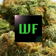 App Weed Facts APK for Windows Phone
