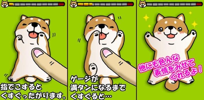 Tickling dog