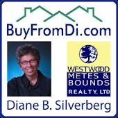 Diane Silverberg - Buy From Di