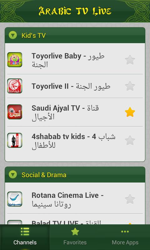 Arabic TV Live - screenshot