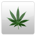 Weed News icon