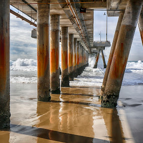California cool ..  Venice Beach, California by Tin Tin Abad - Uncategorized All Uncategorized ( viewbug, facebook,  )