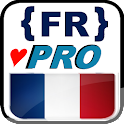 French lessons (PRO) icon
